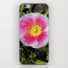 Pink & White Poppy iPhone & iPod Skin