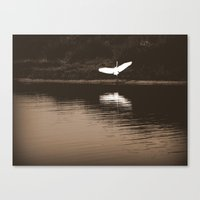 Perfect Landing Canvas Print