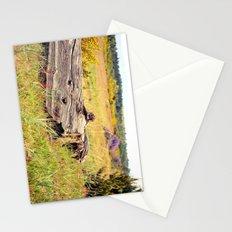 beach log Stationery Cards