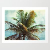 Palm, Tropical Art Print