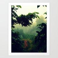 Humid Art Print