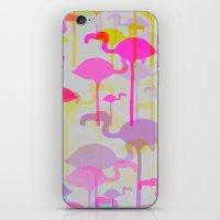 Flamingo Land iPhone & iPod Skin