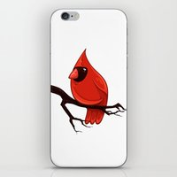 Cardinal iPhone & iPod Skin