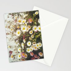 Wall of Daisies Stationery Cards
