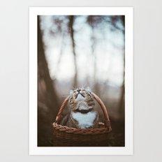 Cat in a basket Art Print