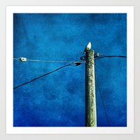 'BIRD ON A WIRE' Art Print