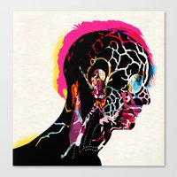 040815 Canvas Print