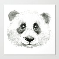Giant Panda portrait SK063 Canvas Print