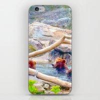 Wild Bears iPhone & iPod Skin