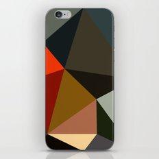 construction iPhone & iPod Skin