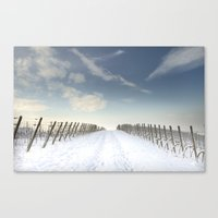 Vineyards In The Snow Canvas Print