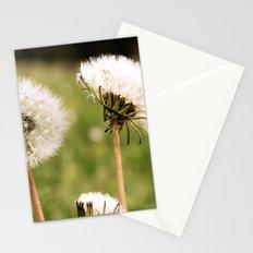 Lion's Den Stationery Cards