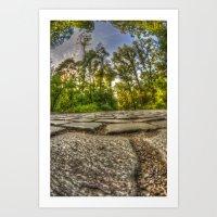 Stone woods Art Print