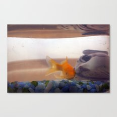 Fish in trouble Canvas Print
