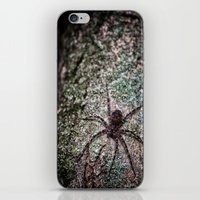 Creepy Spider iPhone & iPod Skin