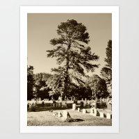 Tree Over The Cemetery Art Print