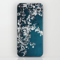 white blossoms iPhone & iPod Skin