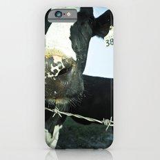 3873 iPhone 6 Slim Case