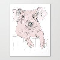 Piggywig Canvas Print