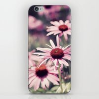 Sweet Daisies iPhone & iPod Skin