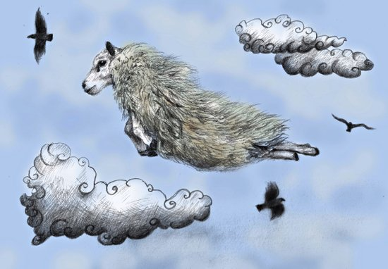 Flying sheep Canvas Print