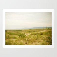 Peterson Beach Dune Grass Art Print