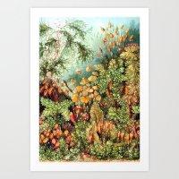 Botanic Vintage Art Print