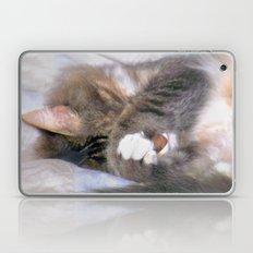 My Cat Actually Sleeps This Way Laptop & iPad Skin