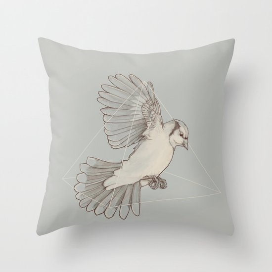 Dynamics of Flight Throw Pillow