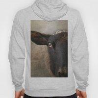 In A Sheep's Eye Hoody