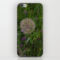 Field of flowers and Dandelions iPhone & iPod Skin