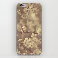 There was a Spring iPhone & iPod Skin