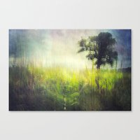 Connie's Backyard Canvas Print