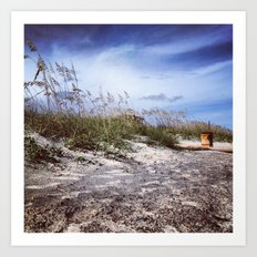 Charleston Dunes Art Print