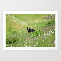 Pretty Bear Art Print