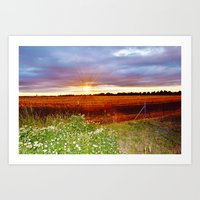 Sunshine Field Art Print