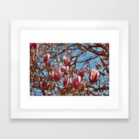 Magnolia Heaven Framed Art Print