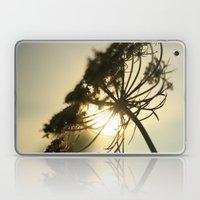 Lace Silhouette Laptop & iPad Skin