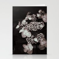 Black And White Botanica… Stationery Cards