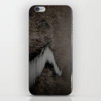 Path IV iPhone & iPod Skin
