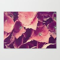 Canvas Print featuring purple flowers by California English