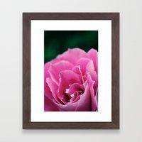 Flower in Bloom Framed Art Print
