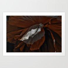 A Poppy Imagined, 2012 Art Print