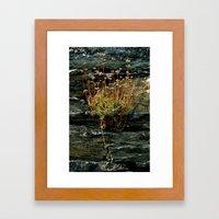 The Power of Nature  Framed Art Print