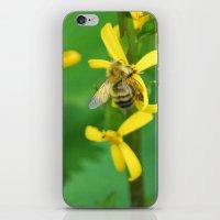 Bumblebee On Yellow Flow… iPhone & iPod Skin