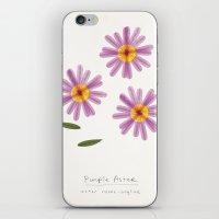 Purple Aster Modern Bota… iPhone & iPod Skin