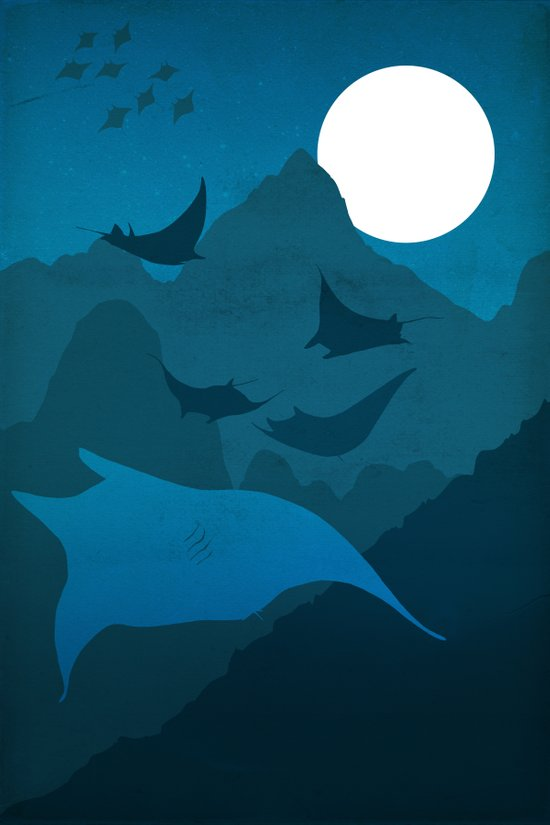 No Memory of the Fliers in the Night Art Print