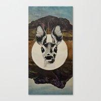Desert Eyes Canvas Print