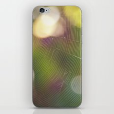 Delicate Beauty iPhone & iPod Skin