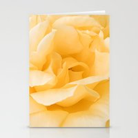 Vanilla Rose Stationery Cards